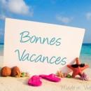Programme accueil de loisirs des vacances d'été 2020!